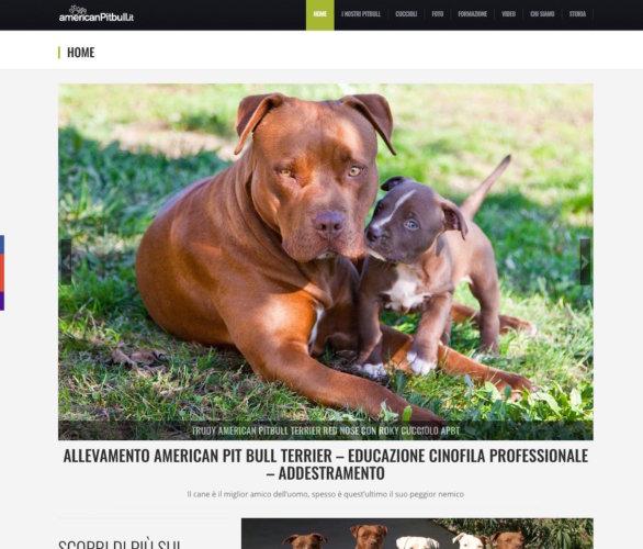 American Pitbull, il sito per veri amanti degli animali